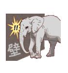 動物スタンプ 【 ZOO.Ⅱ】(個別スタンプ:28)