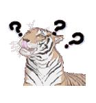動物スタンプ 【 ZOO.Ⅱ】(個別スタンプ:34)