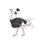 動物スタンプ 【 ZOO.Ⅱ】(個別スタンプ:38)