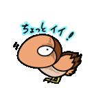 ギロ目ドリイ2(個別スタンプ:02)