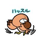 ギロ目ドリイ2(個別スタンプ:34)