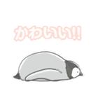 ジワるペンギン-動く-(個別スタンプ:09)