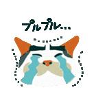 猫のヌーン(個別スタンプ:11)