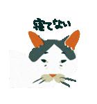 猫のヌーン(個別スタンプ:14)
