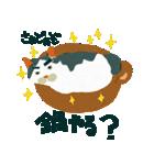 猫のヌーン(個別スタンプ:24)