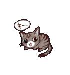 きじとら猫 ふうちゃんの日常(個別スタンプ:02)