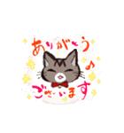 きじとら猫 ふうちゃんの日常(個別スタンプ:06)