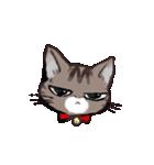 きじとら猫 ふうちゃんの日常(個別スタンプ:17)