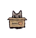 きじとら猫 ふうちゃんの日常(個別スタンプ:20)