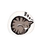 きじとら猫 ふうちゃんの日常(個別スタンプ:21)