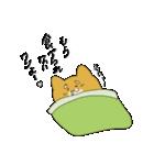 ハチタロウ、ワンよ~!(個別スタンプ:01)