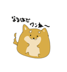 ハチタロウ、ワンよ~!(個別スタンプ:02)