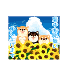 動く★お祝い&春夏秋冬・季節の挨拶セット(個別スタンプ:15)