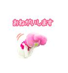 動く!サンリオキャラクターズ【実写版】(個別スタンプ:09)