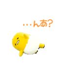 動く!サンリオキャラクターズ【実写版】(個別スタンプ:15)