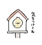 きいろいトリ(個別スタンプ:39)