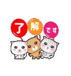 動く!3匹の子ネコ!(個別スタンプ:07)
