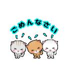 動く!3匹の子ネコ!(個別スタンプ:12)