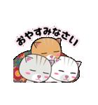 動く!3匹の子ネコ!(個別スタンプ:20)