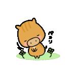 いのししうりぼう  うりりん  春スタンプ(個別スタンプ:3)