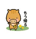 いのししうりぼう  うりりん  春スタンプ(個別スタンプ:13)