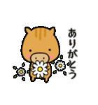いのししうりぼう  うりりん  春スタンプ(個別スタンプ:16)