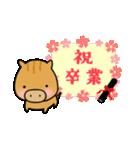 いのししうりぼう  うりりん  春スタンプ(個別スタンプ:35)