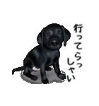 動く!黒ラブⅡ(個別スタンプ:4)