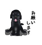 動く!黒ラブⅡ(個別スタンプ:8)