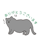 もっちりグレー猫の使いやすいスタンプ(個別スタンプ:02)