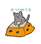 もっちりグレー猫の使いやすいスタンプ(個別スタンプ:05)