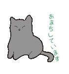 もっちりグレー猫の使いやすいスタンプ(個別スタンプ:10)