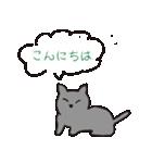 もっちりグレー猫の使いやすいスタンプ(個別スタンプ:24)