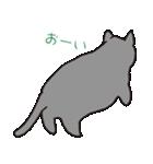 もっちりグレー猫の使いやすいスタンプ(個別スタンプ:27)