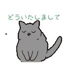 もっちりグレー猫の使いやすいスタンプ(個別スタンプ:28)