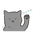 もっちりグレー猫の使いやすいスタンプ(個別スタンプ:29)