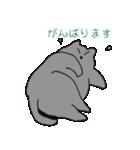 もっちりグレー猫の使いやすいスタンプ(個別スタンプ:32)