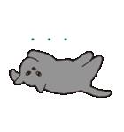 もっちりグレー猫の使いやすいスタンプ(個別スタンプ:33)
