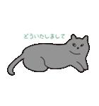もっちりグレー猫の使いやすいスタンプ(個別スタンプ:35)