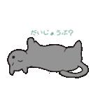 もっちりグレー猫の使いやすいスタンプ(個別スタンプ:37)