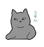 もっちりグレー猫の使いやすいスタンプ(個別スタンプ:40)