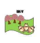 桜-三匹の犬たち(個別スタンプ:06)
