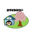 桜-三匹の犬たち(個別スタンプ:12)