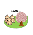 桜-三匹の犬たち(個別スタンプ:15)