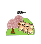 桜-三匹の犬たち(個別スタンプ:16)