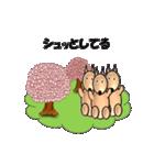 桜-三匹の犬たち(個別スタンプ:20)