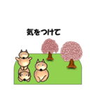 桜-三匹の犬たち(個別スタンプ:22)