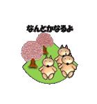 桜-三匹の犬たち(個別スタンプ:31)