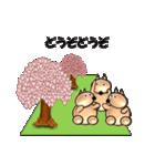桜-三匹の犬たち(個別スタンプ:35)