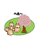 桜-三匹の犬たち(個別スタンプ:36)